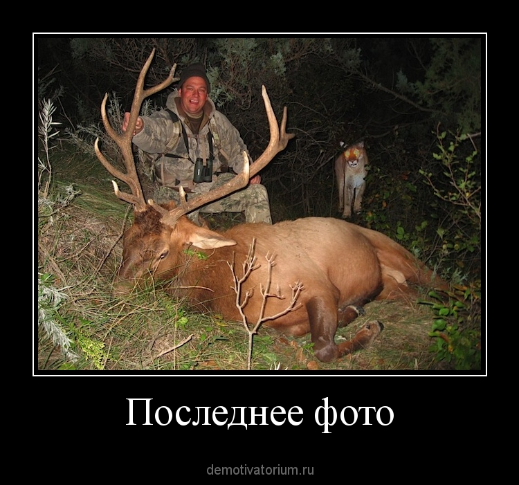 куртки демотиватор про охотника одина