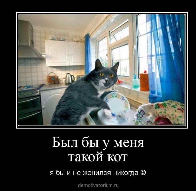 Если бы у меня был такой кот я не женился бы никогда
