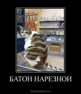 Демотиватор БАТОН НАРЕЗНОЙ