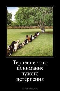 Демотиватор Терпение - это понимание чужого нетерпения