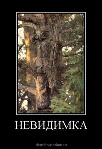 Демотиватор НЕВИДИМКА
