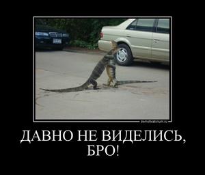Демотиватор ДАВНО НЕ ВИДЕЛИСЬ, БРО!  - 2011-10-25