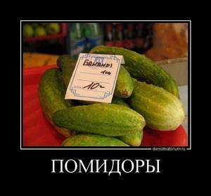 Демотиватор ПОМИДОРЫ