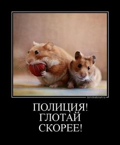 Демотиватор ПОЛИЦИЯ! ГЛОТАЙ СКОРЕЕ!
