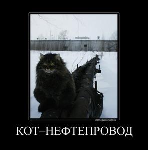 Демотиватор КОТ–НЕФТЕПРОВОД