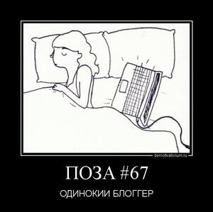 демотиватор ПОЗА #67 ОДИНОКИЙ БЛОГГЕР - 2011-11-28