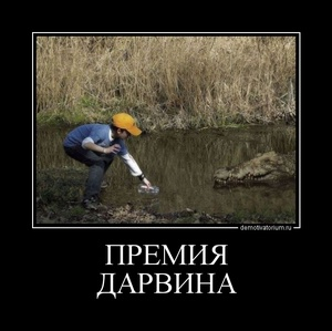 демотиватор ПРЕМИЯ ДАРВИНА  - 2011-11-28