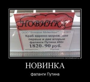 демотиватор НОВИНКА фаланги Путина - 2011-11-30