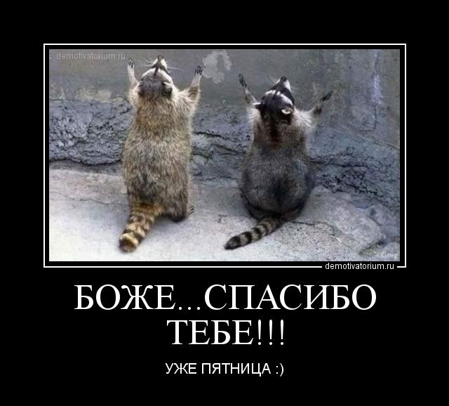 http://demotivatorium.ru/sstorage/3/2011/12/0912110920229394.jpg