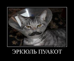 демотиватор ЭРКЮЛЬ ПУАКОТ  - 2011-12-14