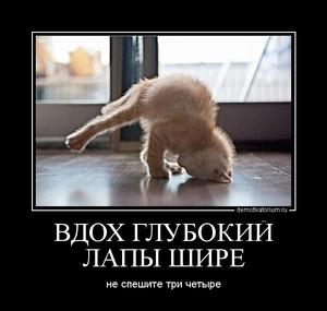 демотиватор ВДОХ ГЛУБОКИЙ ЛАПЫ ШИРЕ не спешите три четыре - 2011-12-15