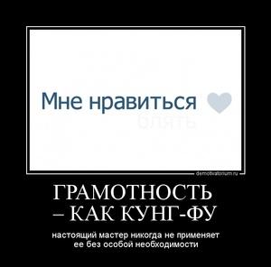 демотиватор ГРАМОТНОСТЬ  – КАК КУНГ-ФУ настоящий мастер никогда не применяет ее без особой необходимости - 2011-12-31