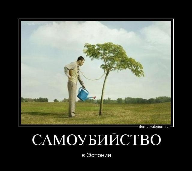 Садовником / смешные картинки и другие приколы