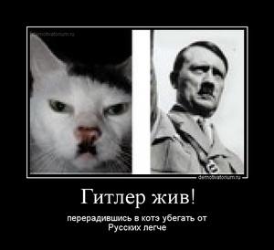 Демотиватор Гитлер жив! перерадившись в котэ убегать от Русских легче