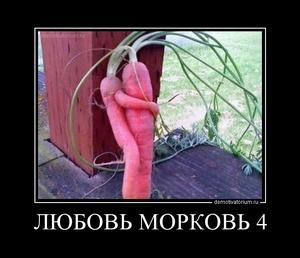 Демотиватор ЛЮБОВЬ МОРКОВЬ 4