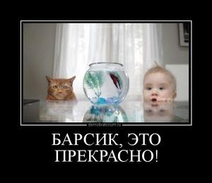 Демотиватор БАРСИК, ЭТО ПРЕКРАСНО!