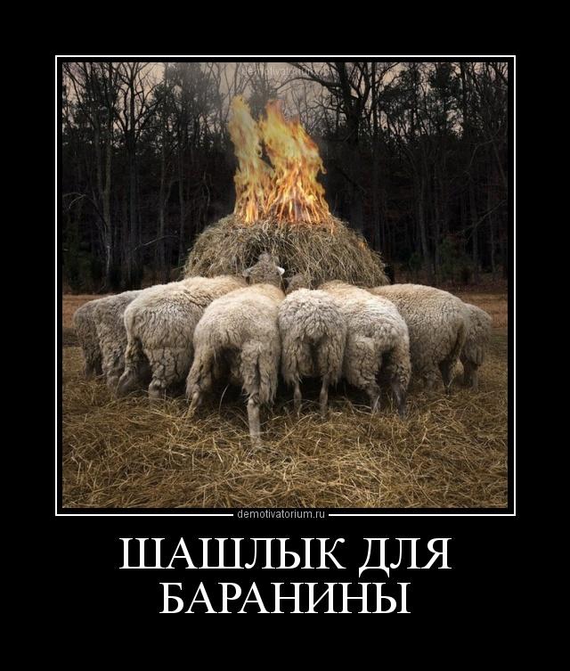 демотиватор ШАШЛЫК ДЛЯ БАРАНИНЫ  - 2012-2-20