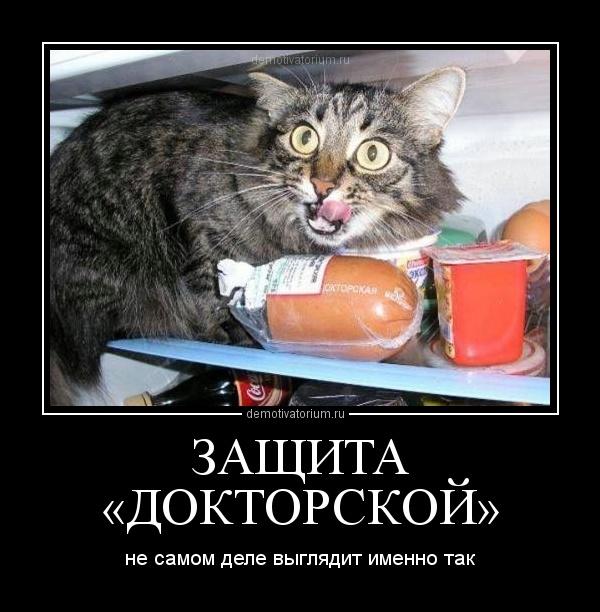 демотиватор ЗАЩИТА «ДОКТОРСКОЙ» не самом деле выглядит именно так - 2012-2-27