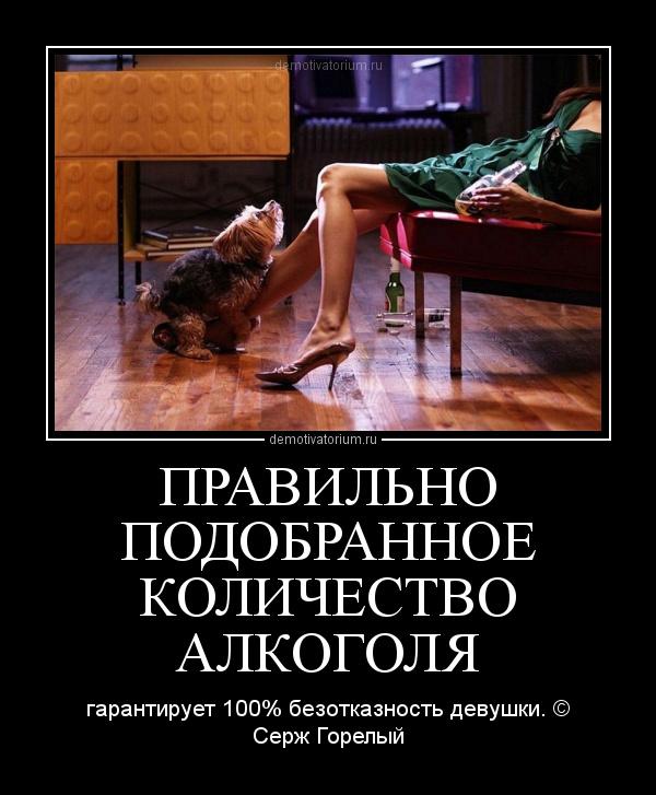 Демотиваторы про алкоголь и проституток