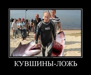 Демотиватор КУВШИНЫ-ЛОЖЬ