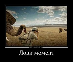 демотиватор Лови момент  - 2012-2-28