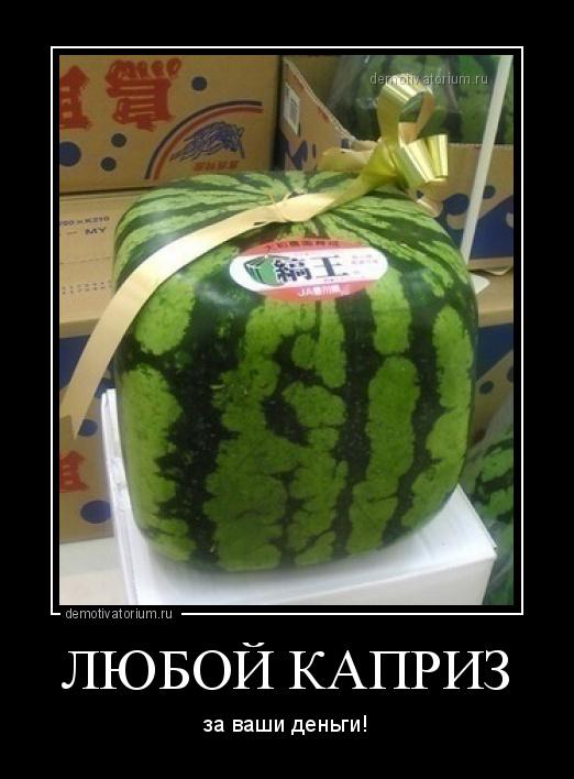 демотиватор ЛЮБОЙ КАПРИЗ за ваши деньги! - 2012-3-05