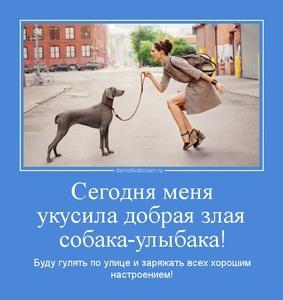 http://demotivatorium.ru/sstorage/3/2012/03/tmb_1103120843558834.jpg