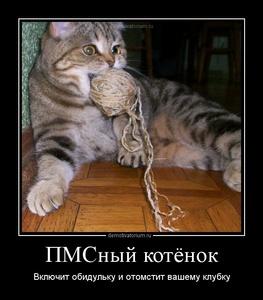 Демотиватор ПМСный котёнок Включит обидульку и отомстит вашему клубку