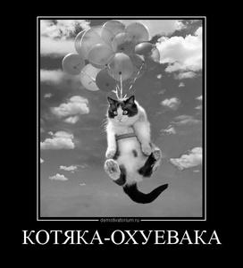 Демотиватор КОТЯКА-ОХУЕВАКА