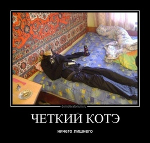Демотиватор ЧЕТКИЙ КОТЭ ничего лишнего