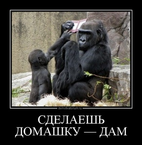 Демотиватор СДЕЛАЕШЬ ДОМАШКУ — ДАМ