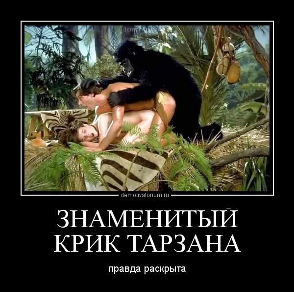 секс с животными картинки:
