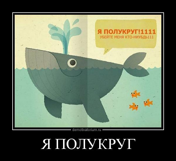 демотиватор Я ПОЛУКРУГ  - 2012-5-06