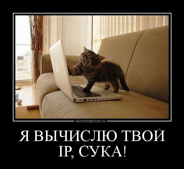 Чеченские сучки фото 15 фотография