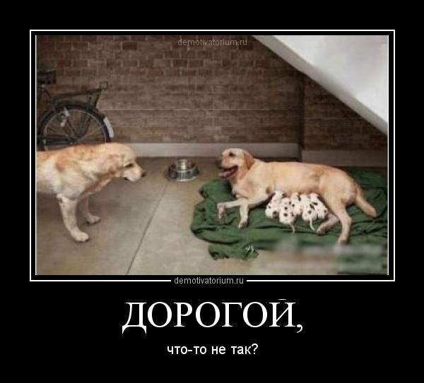 http://demotivatorium.ru/sstorage/3/2012/05/3105122004563038.jpg