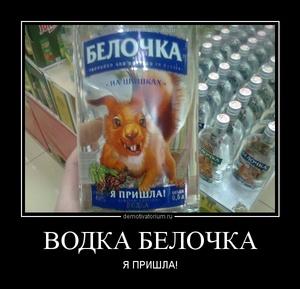 Демотиватор ВОДКА БЕЛОЧКА Я ПРИШЛА!