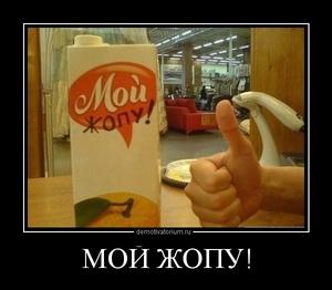 Демотиватор МОЙ ЖОПУ!
