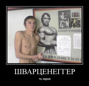 демотиватор ШВАРЦЕНЕГГЕР то херня - 2012-5-27