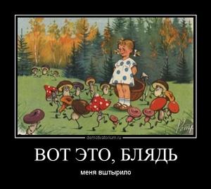 демотиватор ВОТ ЭТО, БЛЯДЬ меня вштырило - 2012-5-29
