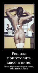 демотиватор Решила приготовить мясо в вине. После 3 бутылки вообще не поняла, что я делаю на кухне! - 2012-5-31