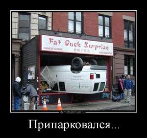 Демотиватор Припарковался...