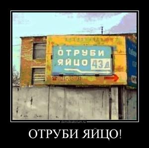 демотиватор ОТРУБИ ЯЙЦО!  - 2012-6-29