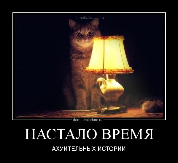 настало время офигительных историй кот картинка деятельность больше подходит