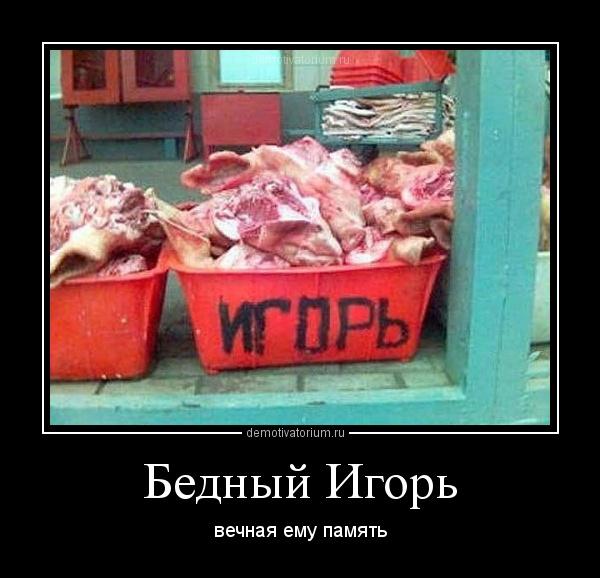 демотиватор Бедный Игорь вечная ему память - 2012-7-26