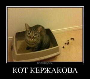 демотиватор КОТ КЕРЖАКОВА  - 2012-7-04