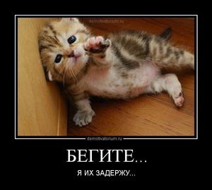 демотиватор БЕГИТЕ... Я ИХ ЗАДЕРЖУ... - 2012-7-27