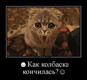 Демотиватор ☻Как колбаска кончилась?☺