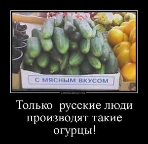 Демотиватор Только  русские люди производят такие огурцы!