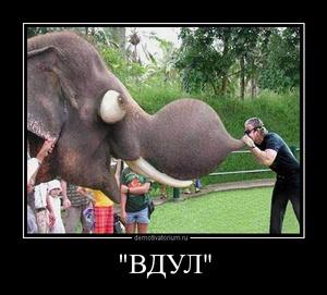 Демотиватор 'ВДУЛ'