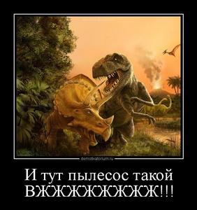 демотиватор И тут пылесос такой ВЖЖЖЖЖЖЖЖ!!!  - 2012-10-28